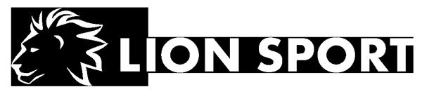 vetsi-lion